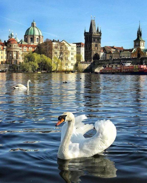тур в Чехію